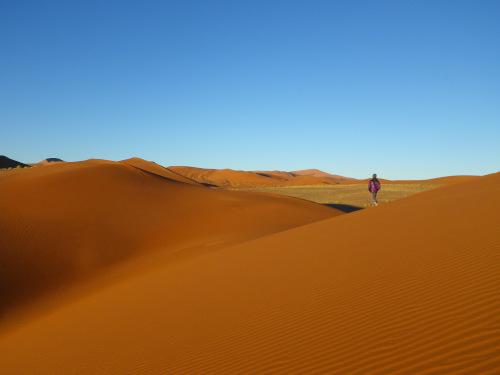ナミビアナミブ砂漠3 (3)