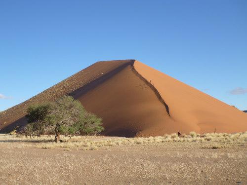 ナミビアナミブ砂漠2 (5)