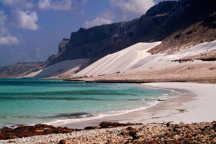 私が死ぬまでに行きたい絶景3:イエメンのソコトラ島「インド洋のガラパゴス」 (5)