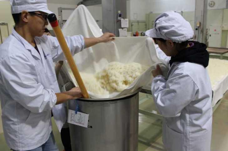愛知県の幻の日本酒「空」を作る関谷醸造の酒造見学と酒造り体験 (15)