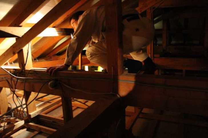 屋根裏に住み着いたハクビシンの駆除に行ってみた (2)