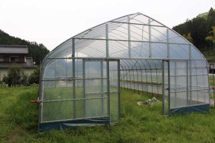 草刈機と耕運機を使いこなしてビニールハウスを耕す方法 (7)