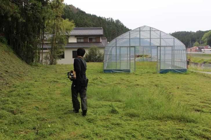 草刈機と耕運機を使いこなしてビニールハウスを耕す方法 (9)