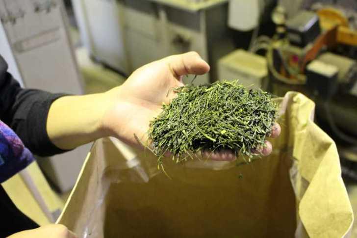 鈴木製茶のお茶工場を見学して、茶葉の作り方を聞いてきたよ!(新城市作手田代) (16)