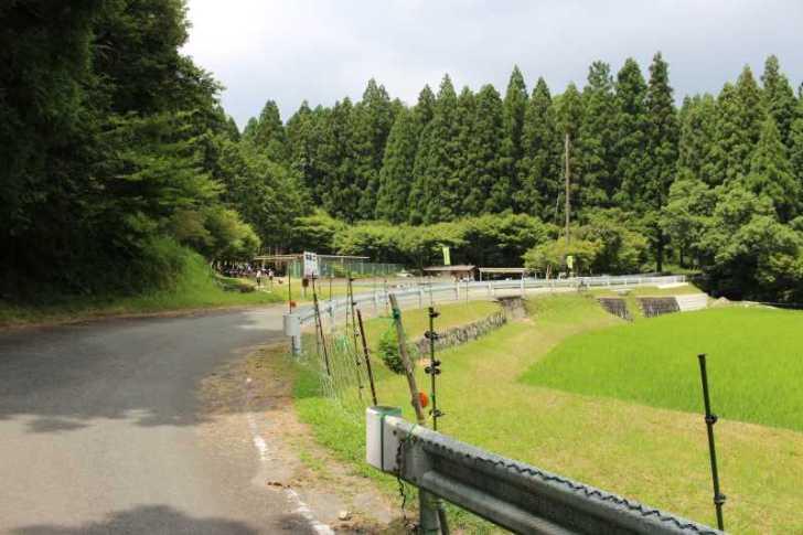 愛知県新城市作手の「保永の三滝」の滝つぼで泳いでみた! (2)