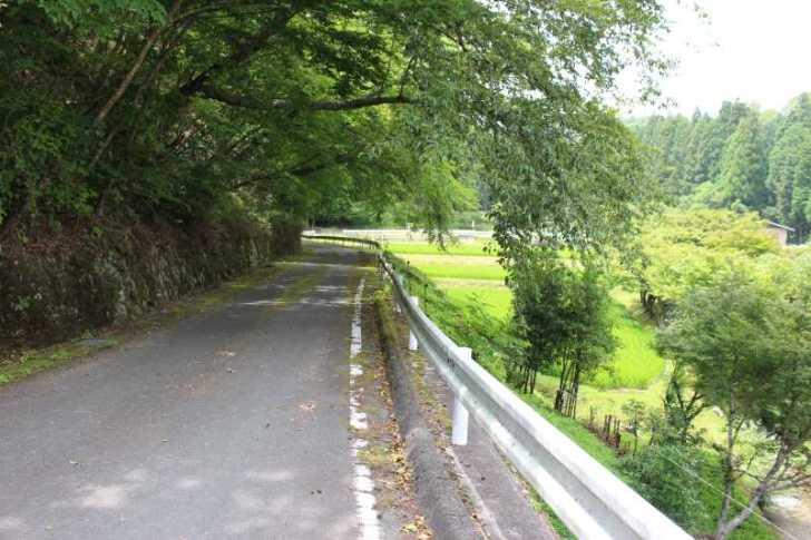 愛知県新城市作手の「保永の三滝」の滝つぼで泳いでみた! (1)