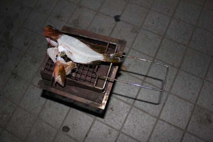 福井で魚突き!80cm弱の真鯛と40cm強の石鯛とキジハタとったどー!! (18)