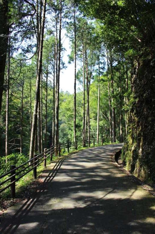 愛知県唯一の日本の滝百選である新城市「阿寺の七滝」に情緒あり (1)