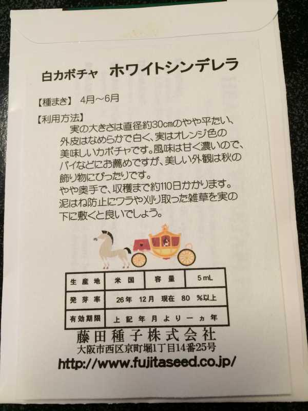 【珍しい野菜栽培】2.育てるレア野菜の種は通販で。藤田種子で発注しました! (24)