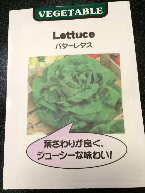 【珍しい野菜栽培】2.育てるレア野菜の種は通販で。藤田種子で発注しました! (17)