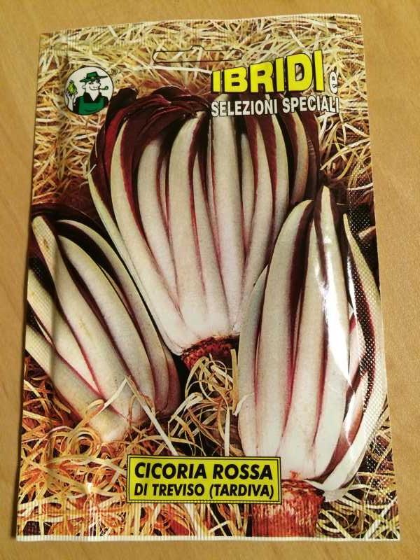 【珍しい野菜栽培】3.イタリア野菜の種が送ってもらえたので、赤チコリータルディーボなども育てます! (4)