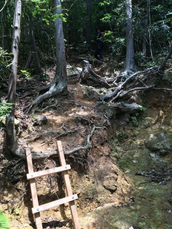 三ツ瀬明神山を登山してきたよ!登山ルートは絶景の乳岩コース【愛知】 (8)