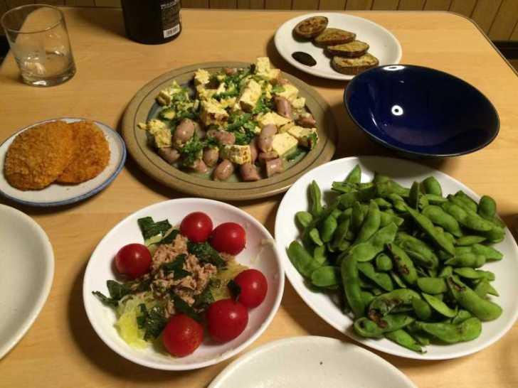 【珍しい野菜栽培】16.黒トマトが鹿に喰われた!ひょうたん死亡!ゴーヤ、枝豆、ピーマンを収穫 (5)