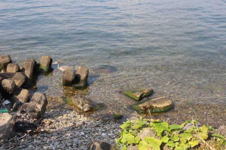 滋賀の絶対行くべきおすすめ観光スポットは「沖島」で決まり! (9)