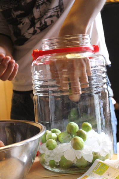 梅干しと梅酒の作り方!熟成梅は梅干しに、青梅は梅酒に、っていうけど、青梅も梅干しにしてみた (10)