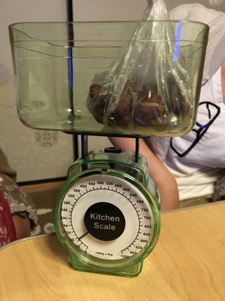 輸入したカカオ豆からチョコレートを作るワークショップを開催!真のチョコレートの作り方!! (1)