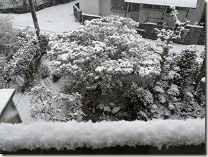 小郡市_雪景色_画像02