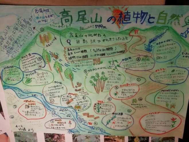 高尾山夏休みの自由研究