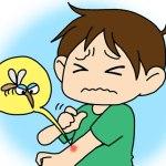 蚊に刺されるとなぜかゆくなるの、かゆみ止めが効く理由やその他の方法