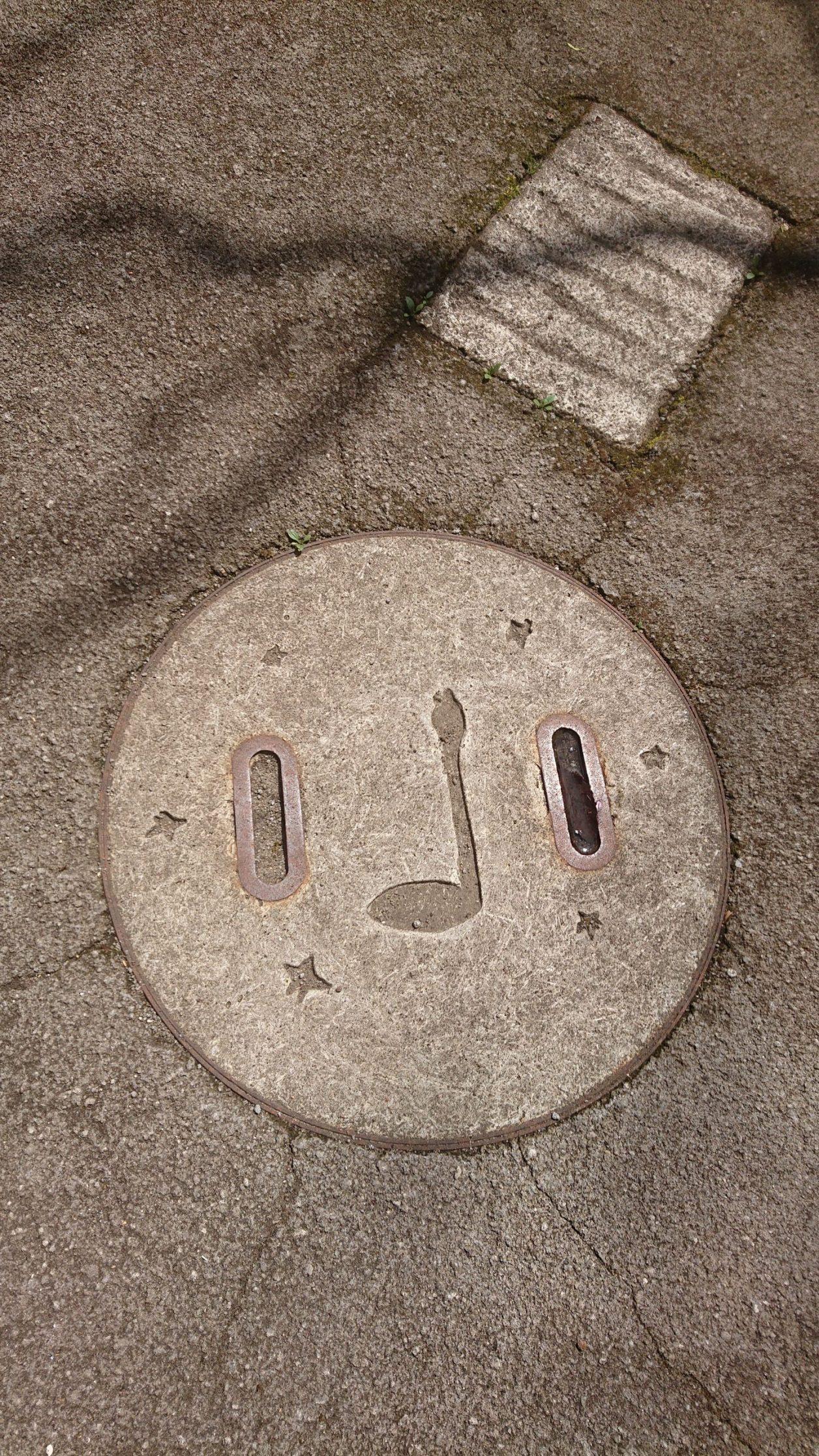 ヘビが掘られたマンホールの蓋