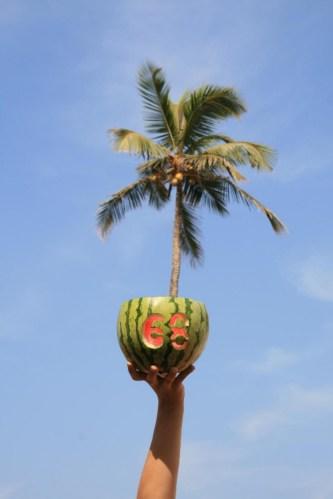 Pulp68 in Goa