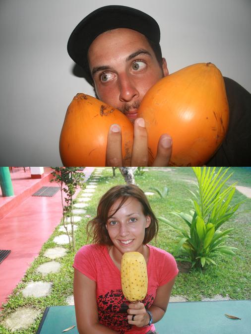 Coco Pineapple YUMI ! (le lendemain du cassage de coude :))