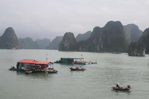 School and supermarket in Halong