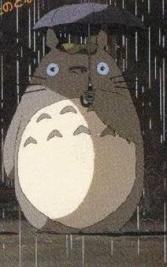 Real totoro