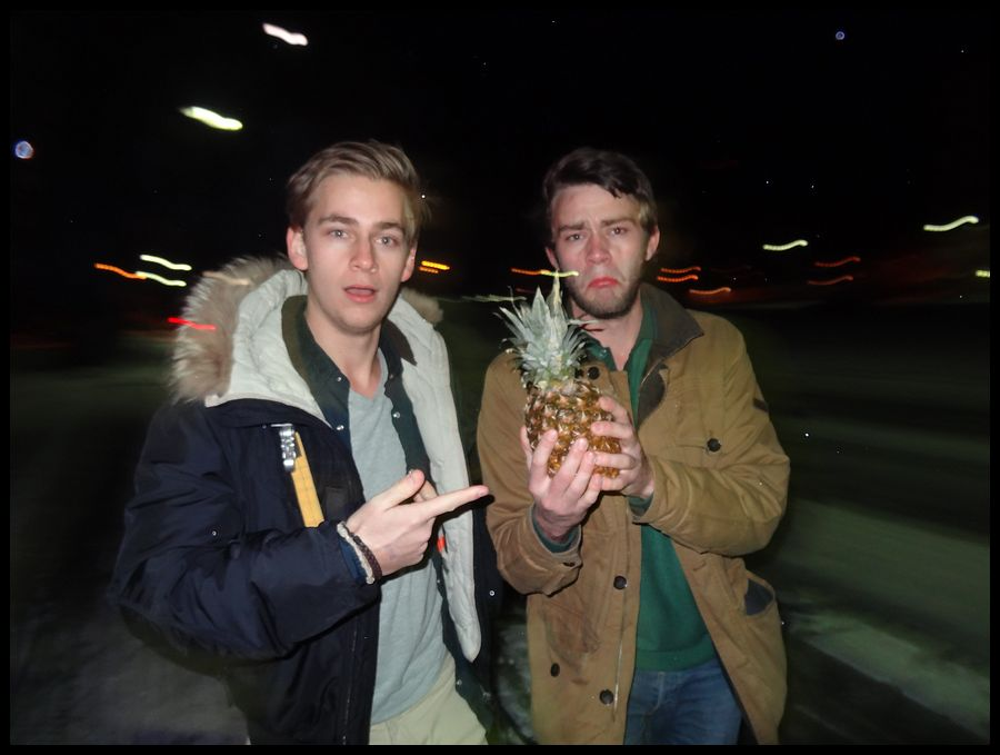 Pineapple night
