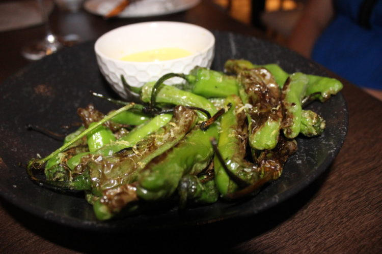 Terra Mare Fort Lauderdale Blistered Shishito Peppers
