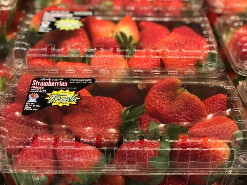 Fresh From Florida Strawberries