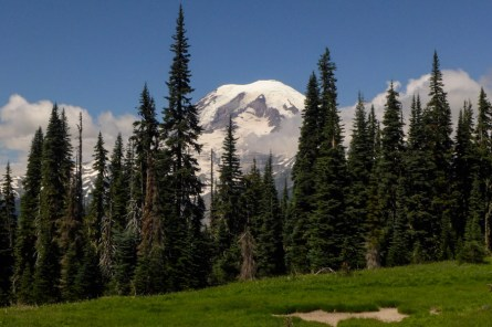 Rainier from the Cowlitz Divide