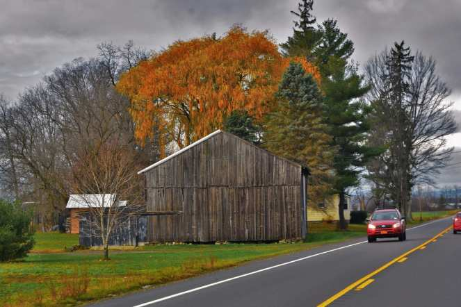 old wood barn back road fall color orange leaves