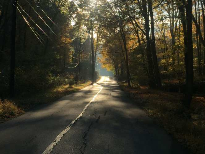 Back Road 1.jpg