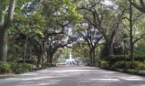 Enjoy this picture of Savannah, because hey... It's Savannah (my favorite place in America)