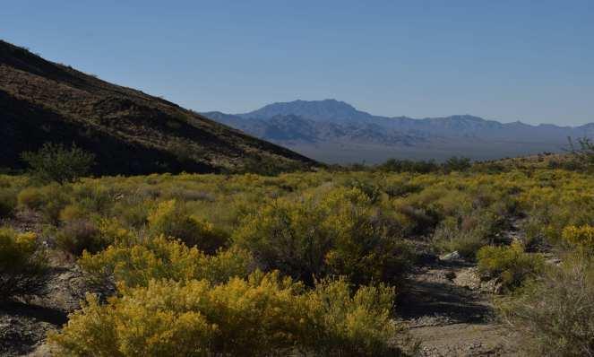Mountains desert California