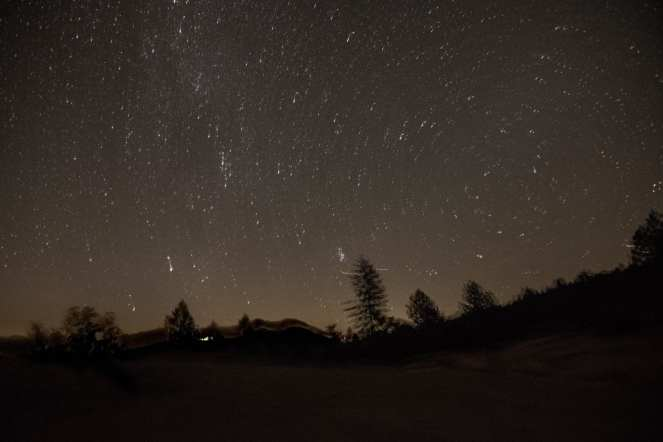 star circle star trail pine trees silhoutte