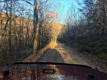Bright golden sunlight warms the winter forest on this dirt road