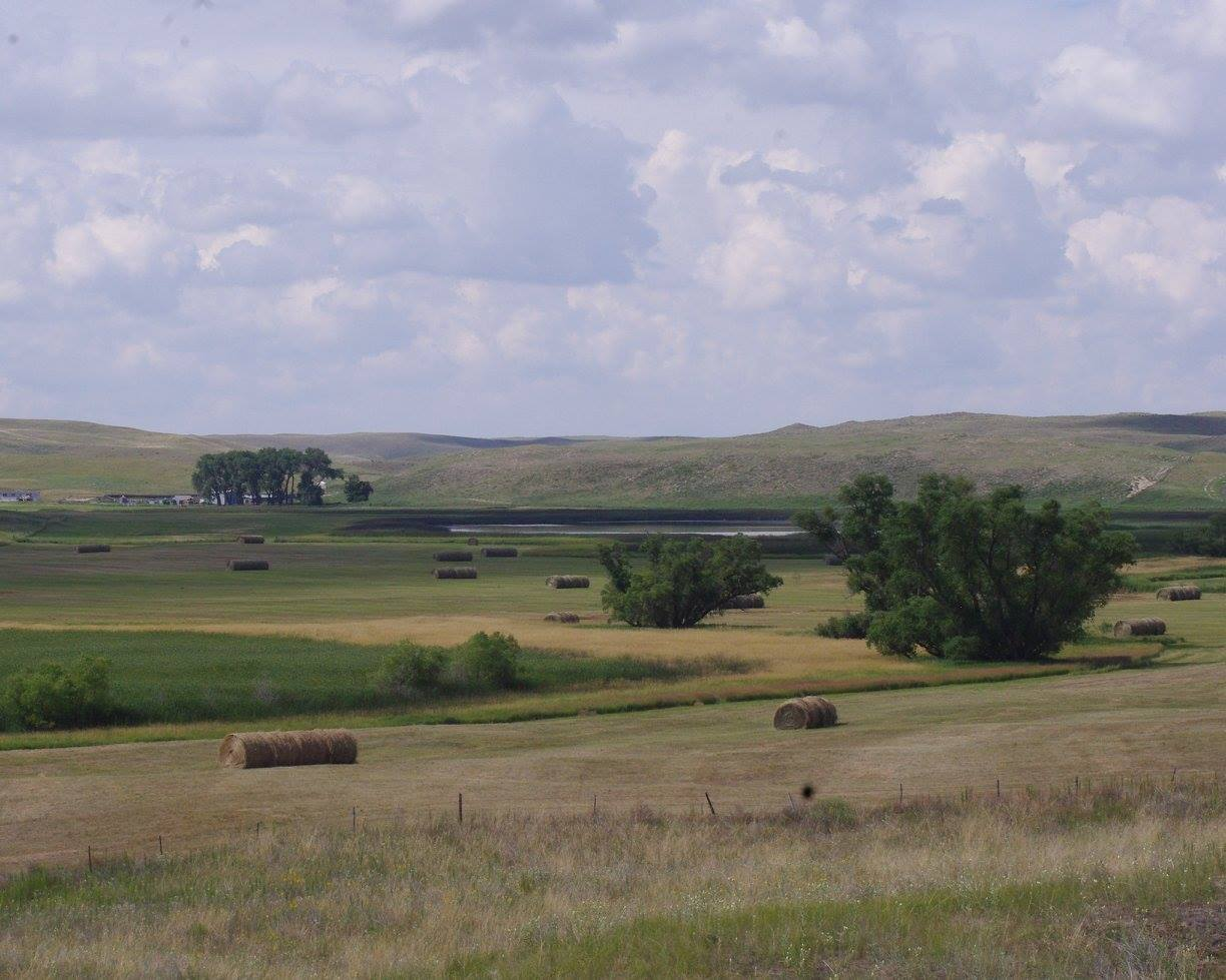 broad plains hay fields hay stacks rolled hay tree stands farms rolling hills plains