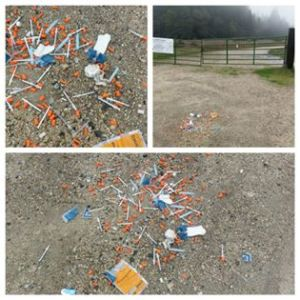 Needles in Public Spaces Report – January 2017