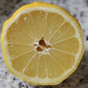 Nicht nur der Mensch, sondern ebenso die Zitrone hat eine wunderbare Faszienstruktur, wie hier gut sichtbar.