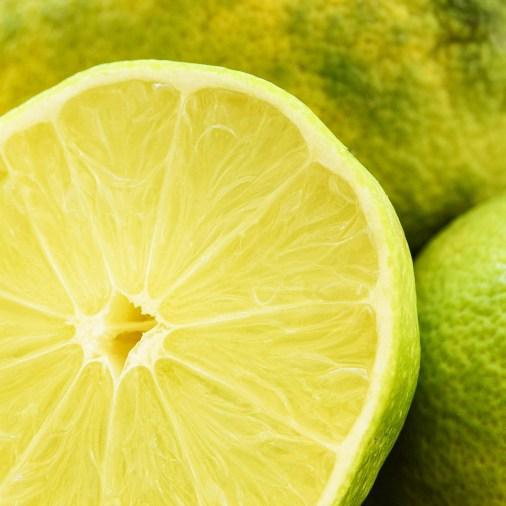 Lime_9370