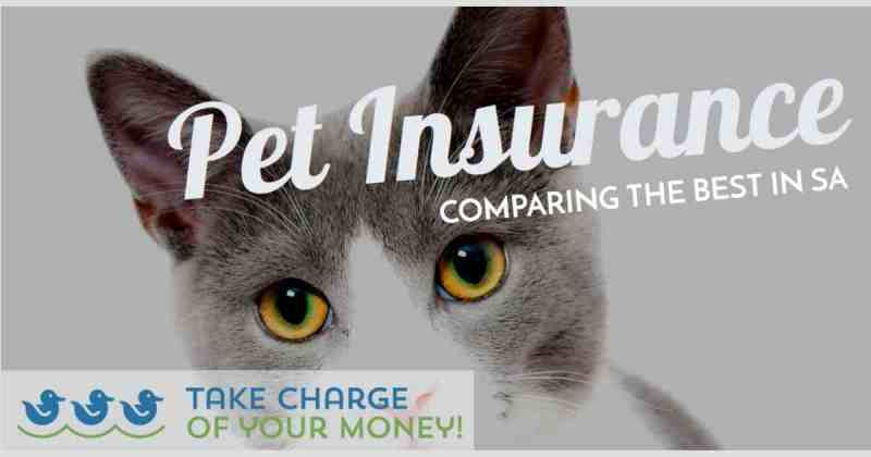 Best pet medical aid