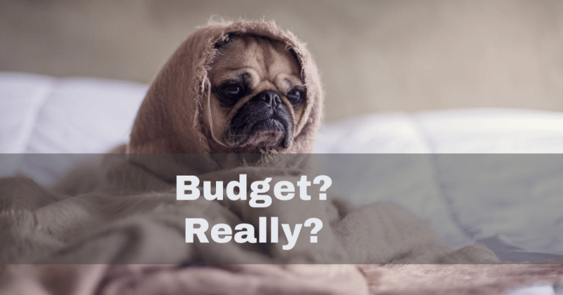 4 Reasons why people hate budgets