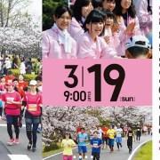 さが桜マラソン2017
