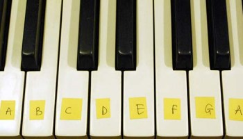 Keyboard vs piano what do new students need what are the steps to learning the piano fandeluxe Gallery