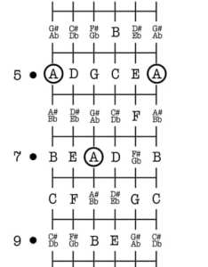 Notes on  guitar neck chart also learning the fretboard bonus rh takelessons