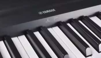 Keyboard vs piano what do new students need 5 best keyboards for piano players fandeluxe Gallery