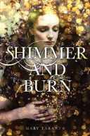 shimmer-and-burn