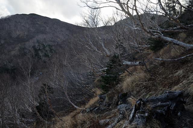 空木岳 池山尾根登山道 空木平避難小屋方面